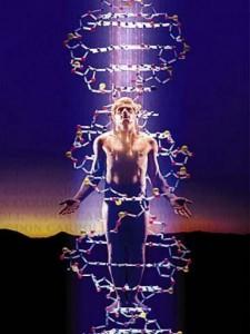 1940. iniziano gli studi sul DNA